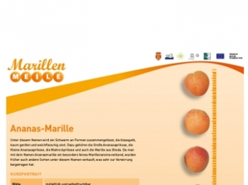 Ananas_Marille